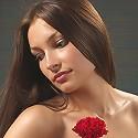 Elvira Red Carnation