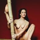 Flexible Erotic