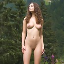 Forest erotic